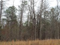 Home for sale: Lot 14 County Rd. 553, Valley, AL 36854