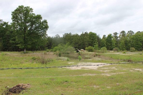 309 Brooks Rd., Corrigan, TX 75939 Photo 6