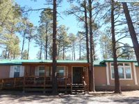 Home for sale: 158 Pine St., Reserve, NM 87830