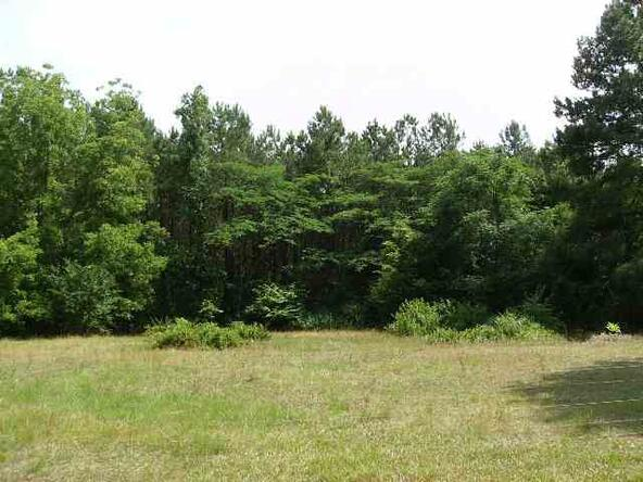 42 Acres Robin Parker Rd., Ozark, AL 36360 Photo 1