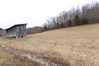 Home for sale: 4404 Laurel Rd., Vanceburg, KY 41179