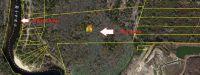 Home for sale: 1 Minnow Run, Ridgeville, SC 29472