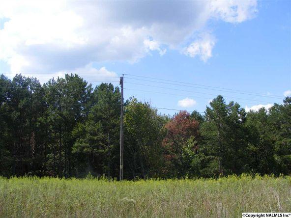 1030 County Rd. 664, Valley Head, AL 35989 Photo 5