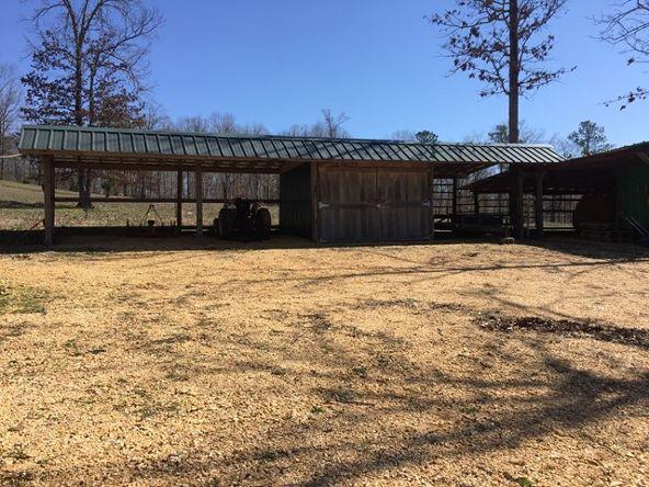 2430 Lost Creek Rd., Russellville, AL 35653 Photo 11