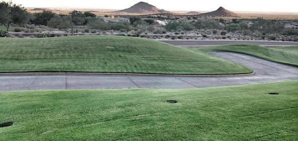 15019 E. Vermillion Dr., Fountain Hills, AZ 85268 Photo 47