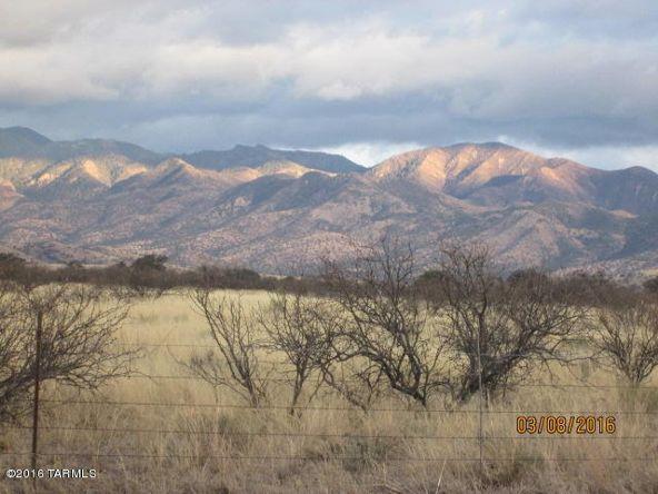 40 Acres S. Kuykendall & E. Shamrock Ln., Pearce, AZ 85625 Photo 12