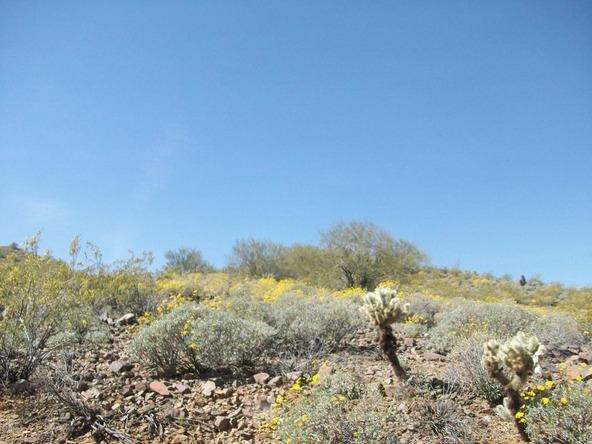 33404 N. 5th St., Phoenix, AZ 85085 Photo 5