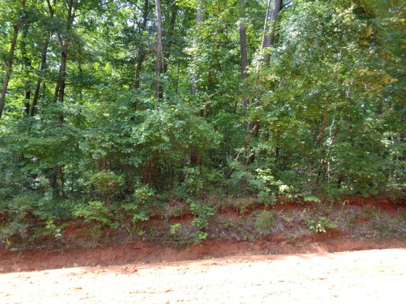 6 Lots Pinedale Dr., Abbeville, AL 36310 Photo 5