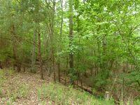 Home for sale: Emerald Springs Ln. N.E., Ellijay, GA 30540