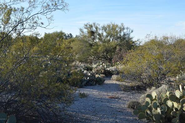 10601 E. Escalante, Tucson, AZ 85730 Photo 4