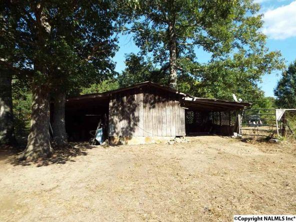 1654 County Rd. 641, Mentone, AL 35984 Photo 8