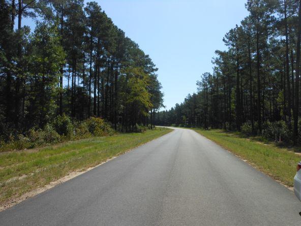 3495 Preserve Ct., Sumter, SC 29150 Photo 7