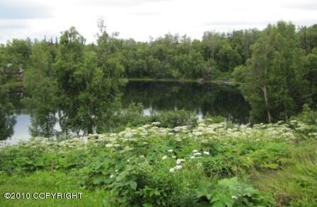 54772 Springhill Cir., Nikiski, AK 99635 Photo 4