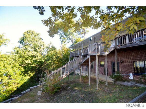 356 Co Rd. 378, Crane Hill, AL 35053 Photo 12