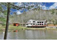 Home for sale: 259 Black Oak Cove Rd., Candler, NC 28715