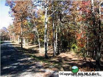 3 County Rd. 935, Mentone, AL 35984 Photo 1