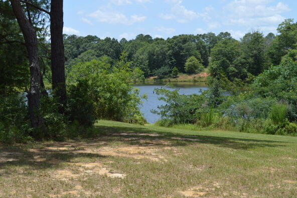 302 Rabbit Run, Enterprise, AL 36330 Photo 29