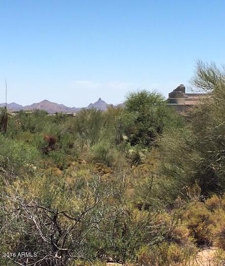 10503 E. Palo Brea Dr., Scottsdale, AZ 85262 Photo 5