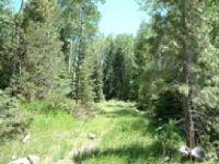 Home for sale: Lot 70 C-2 Whispering Pines, Beaver, UT 84713