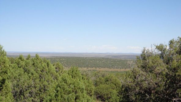 514 Westwood Ranch Lot 514, Seligman, AZ 86337 Photo 20
