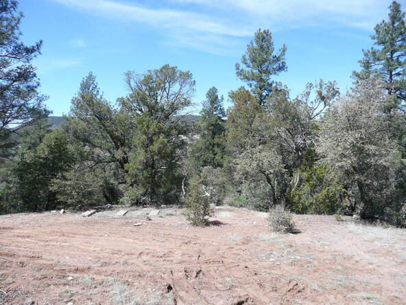 8b N. Chamberlain Trail, Young, AZ 85554 Photo 12