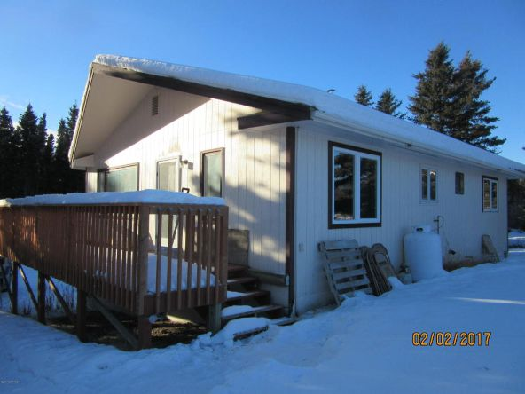 13.89 Edgerton Hwy., Copper Center, AK 99573 Photo 15