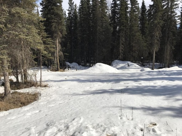 39756 Valley View Rd., Sterling, AK 99672 Photo 26
