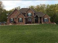 Home for sale: 1025 E. Washington St., Millstadt, IL 62260