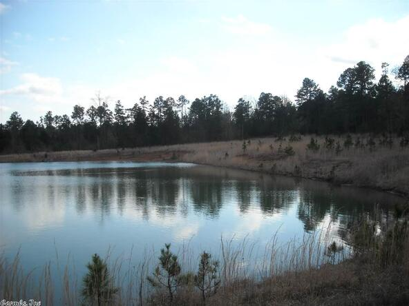 640 Old Gin Rd. W., Bee Branch, AR 72013 Photo 15