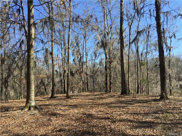 17 Red Eagle Rd., Lowndesboro, AL 36752 Photo 3