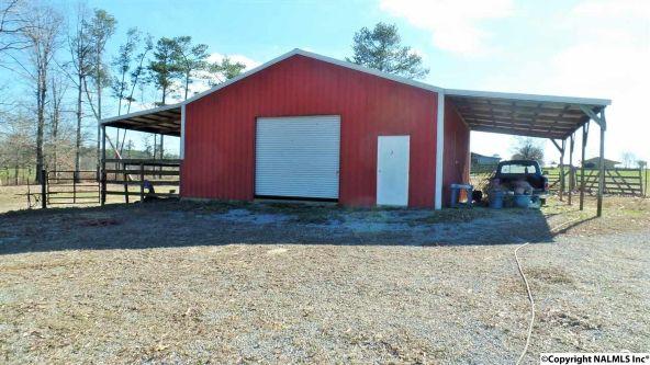 278 County Rd. 557, Grove Oak, AL 35975 Photo 6