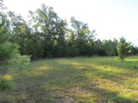 Home for sale: 0 J D's. Point, Boyce, LA 71409