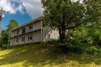 Home for sale: 118 Polk 65 Rd., Mena, AR 71953
