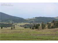 Home for sale: 00 County 9 Hwy., Guffey, CO 80820