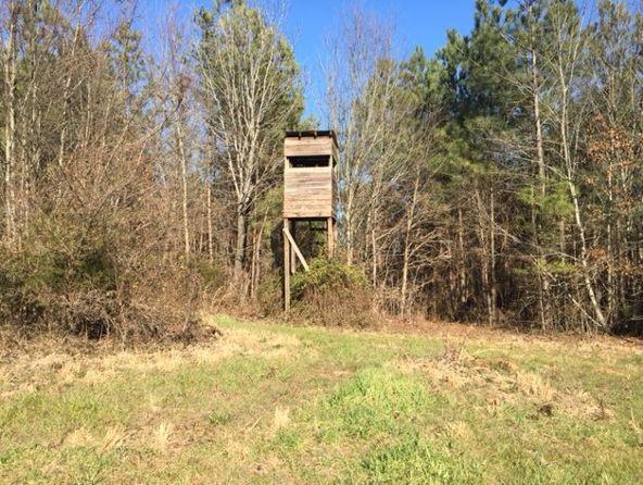 2682 South Sauty Rd., Langston, AL 35951 Photo 24