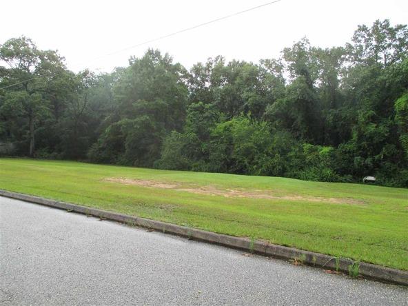 124 County Rd. 442, Daleville, AL 36322 Photo 33