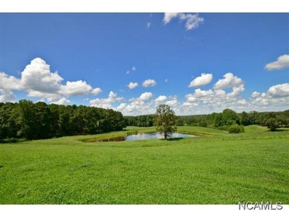 132 Co Rd. 202, Crane Hill, AL 35053 Photo 12