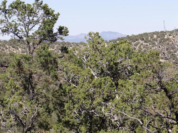 77 Shadow Rock Ranch, Seligman, AZ 86337 Photo 14
