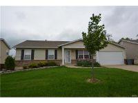 Home for sale: 355 Sandra Way, Winfield, MO 63389