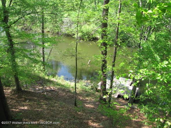 811 Rainwood Lodge Rd., Quinton, AL 35130 Photo 4