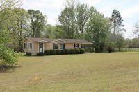 Home for sale: 355 Bob Hale Rd., Plains, GA 31780