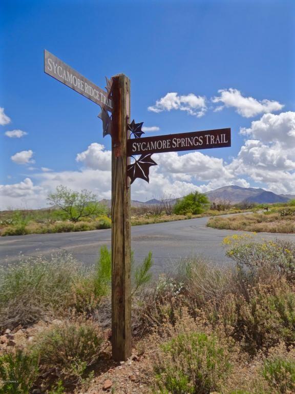 9190 E. Sycamore Springs, Vail, AZ 85641 Photo 4