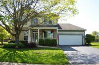 Home for sale: 2419 Hannibal Cir., Plainfield, IL 60586