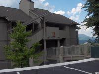 Home for sale: 3710 Weber Rd. C103, Gatlinburg, TN 37738