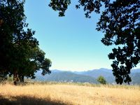 Home for sale: 50 Asoleado Dr., Carmel Valley, CA 93924