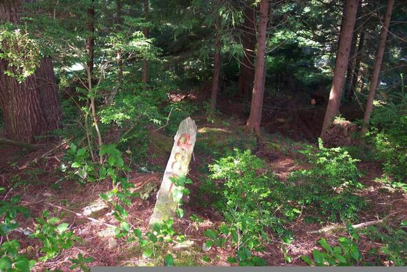 481 Salishan Hills, Gleneden Beach, OR 97388 Photo 8