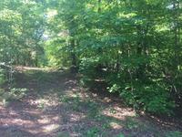 Home for sale: 0 Tidewater Trail, Caret, VA 22436