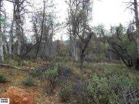 Home for sale: Parcel 2 R/S. 34-30 Erik Ln., Sonora, CA 95370