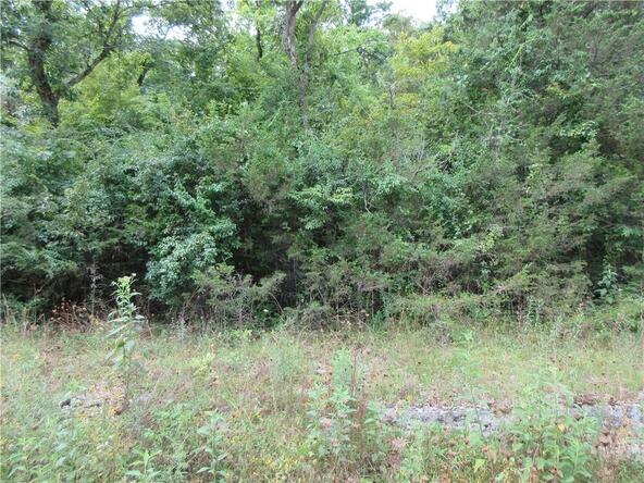 165 Wild Turkey Dr., Holiday Island, AR 72631 Photo 6