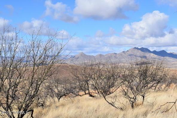 58 Circulo Montana, Patagonia, AZ 85624 Photo 14